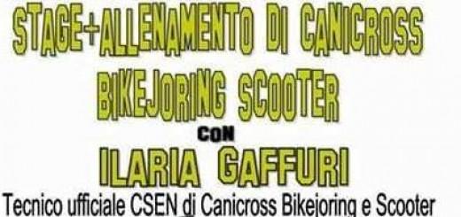 2017_02_5 stage allenamento di canicross bikejoring scooter