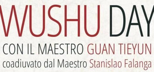 Wushu day_Mod