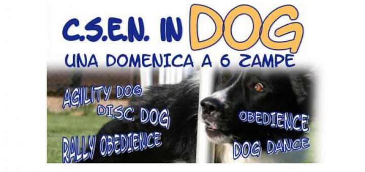 C.S.E.N. IN DOG