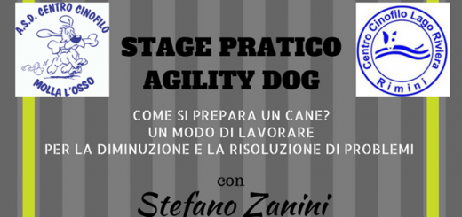 stage pratico agility dog_ok